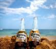 corona-extra-beer