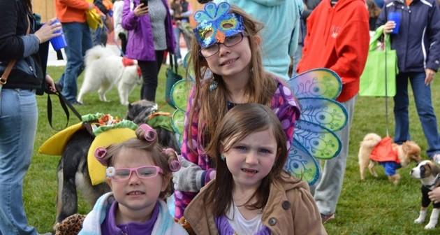 Rochester Halloween Dog Parade